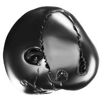 Auspicios Shaligram : Buy Rare Marking Saligram Stones in